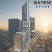รูป ไซมิส พระราม 9 (Siamese Rama 9)