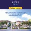 รูป ศุภาลัย พรีโม่ พัทยา (Supalai Primo Pattaya)