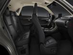 Lexus NX 300h Luxury เลกซัส เอ็นเอ็กซ์ ปี 2017 ภาพที่ 14/20