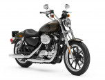 Harley-Davidson Sportster SUPERLOW MY20 ฮาร์ลีย์-เดวิดสัน สปอร์ตสเตอร์ ปี 2020 ภาพที่ 08/13