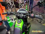 Kawasaki D-Tracker X 250 คาวาซากิ ดี-แทรกเกอร์ ปี 2014 ภาพที่ 8/8