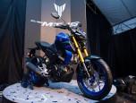 Yamaha MT-15 MY2019 ยามาฮ่า เอ็มที 15 ปี 2018 ภาพที่ 08/10