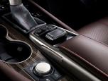 Lexus RX 200t Luxury เลกซัส อาร์เอ็กซ์ ปี 2015 ภาพที่ 06/10