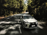 Lexus RX 300 F-Sport AWD เลกซัส อาร์เอ็กซ์ ปี 2019 ภาพที่ 03/20