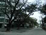 วันพลัส คอนโด คันคลอง (One Plus Condo Kun Klong) ภาพที่ 2/7