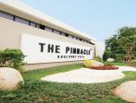 เดอะ พินนาเคิล (The Pinnacle) ภาพที่ 01/22