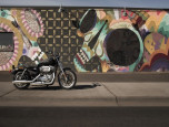 Harley-Davidson Sportster SUPERLOW MY20 ฮาร์ลีย์-เดวิดสัน สปอร์ตสเตอร์ ปี 2020 ภาพที่ 01/13