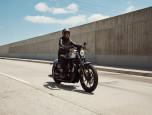 Harley-Davidson Sportster Iron 883 MY20 ฮาร์ลีย์-เดวิดสัน สปอร์ตสเตอร์ ปี 2020 ภาพที่ 04/19