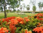 บ้านราชพฤกษ์ สุวรรณภูมิ - ลาดกระบัง เฟส 4 (Baan Ratchapruek Suvarnabhumi - Ladkrabang Phase 4) ภาพที่ 4/7