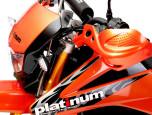 Platinum PX 250 แพล็ททินัม พีเอ็กซ์ ปี 2015 ภาพที่ 02/10