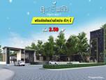 สุชารี พลัส ลำลูกกาคลอง 7 (Sucharee Plus Lamlukka Klong 7) ภาพที่ 4/5