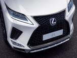 Lexus RX 300 F-Sport AWD เลกซัส อาร์เอ็กซ์ ปี 2019 ภาพที่ 04/20