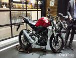 Honda CB 300R MY2018 ฮอนด้า ปี 2018 ภาพที่ 15/27