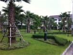 บ้านกลางเมือง อ่อนนุช-วงแหวน (Baan Klang Muang) ภาพที่ 03/19