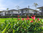 บ้านฉัตรหลวง โครงการ 15 ซอยวัดบางเตยใน - สามโคก (Chatluang 15 Watbangtoeinai - Samcoke) ภาพที่ 03/17