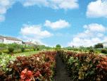 บ้านราชพฤกษ์ สุวรรณภูมิ - ลาดกระบัง เฟส 4 (Baan Ratchapruek Suvarnabhumi - Ladkrabang Phase 4) ภาพที่ 2/7