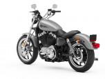 Harley-Davidson Sportster SUPERLOW MY20 ฮาร์ลีย์-เดวิดสัน สปอร์ตสเตอร์ ปี 2020 ภาพที่ 11/13