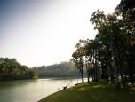 สวอนเลค เขาใหญ่ (Swan Lake Khao Yai) ภาพที่ 1/2