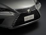 Lexus NX 300h Luxury เลกซัส เอ็นเอ็กซ์ ปี 2017 ภาพที่ 05/20