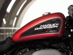 Harley-Davidson Sportster Roadster MY2019 ฮาร์ลีย์-เดวิดสัน สปอร์ตสเตอร์ ปี 2019 ภาพที่ 4/4