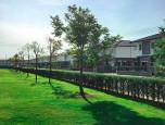 บ้านฉัตรหลวง โครงการ 15 ซอยวัดบางเตยใน - สามโคก (Chatluang 15 Watbangtoeinai - Samcoke) ภาพที่ 05/17