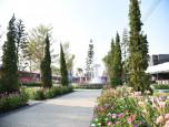 โกลเด้น ทาวน์ สุขุมวิท-สถานีรถไฟฟ้าแบริ่ง (Golden Town Sukhumvit-Bearing Station) ภาพที่ 09/24
