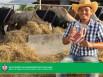 รูป สินเชื่อสานฝันเกษตรกรรุ่นใหม่-ธ.ก.ส. (BAAC)
