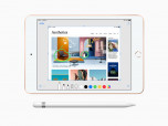 APPLE iPad mini(2019) 256GB Wi-Fi + Cellular แอปเปิล ไอแพด มินิ (2019) 256GB ไวไฟ + เซลลูลาร์ ภาพที่ 3/3