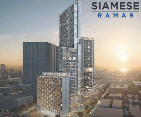 ไซมิส พระราม 9 (Siamese Rama 9)