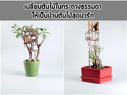 เปลี่ยนต้นไม้ในกระถางธรรมดา