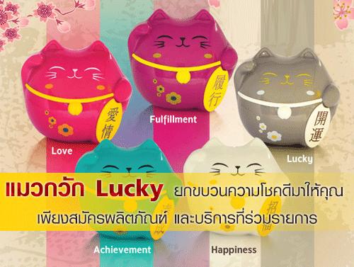 รับแมวกวัก Lucky ยกขบวนความโชคดีมาให้คุณ