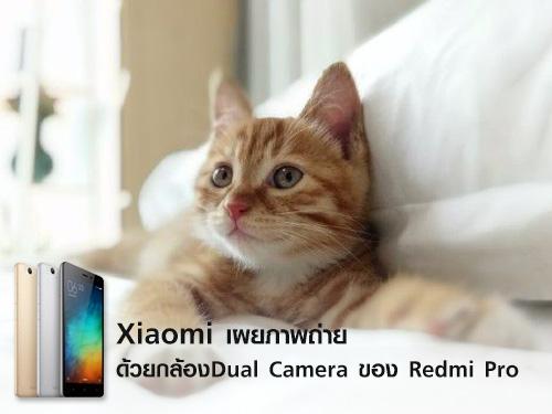เผยภาพถ่ายด้วยกล้อง Dual Camera
