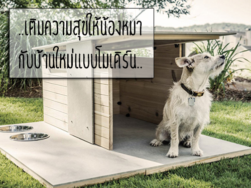 for How much does it cost to build a dog house